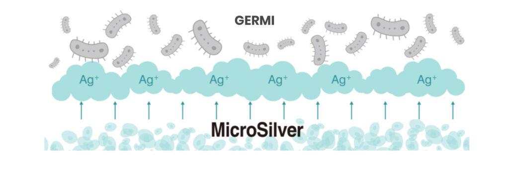 Grafico azioni argento su germi e batteri